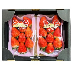 Japanese Skyberry Strawberry Tray