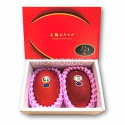 Miyazaki Mango (Taiyo no Tamago) Gift Box
