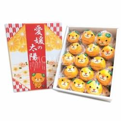 Japanese Ehime no Taiyo Mikan Gift Box 4kg