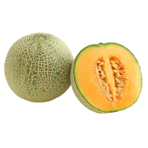 Japanese Quincy Melon