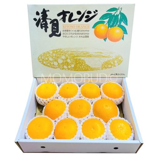 Japanese Kiyomi Orange Gift Box (3kg)