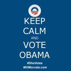 Why I'm Voting For Obama (Cynematic)