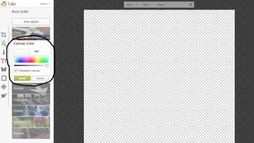 Choose a Transparent Background