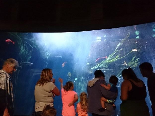 オレゴンコースト水族館-12-36-15