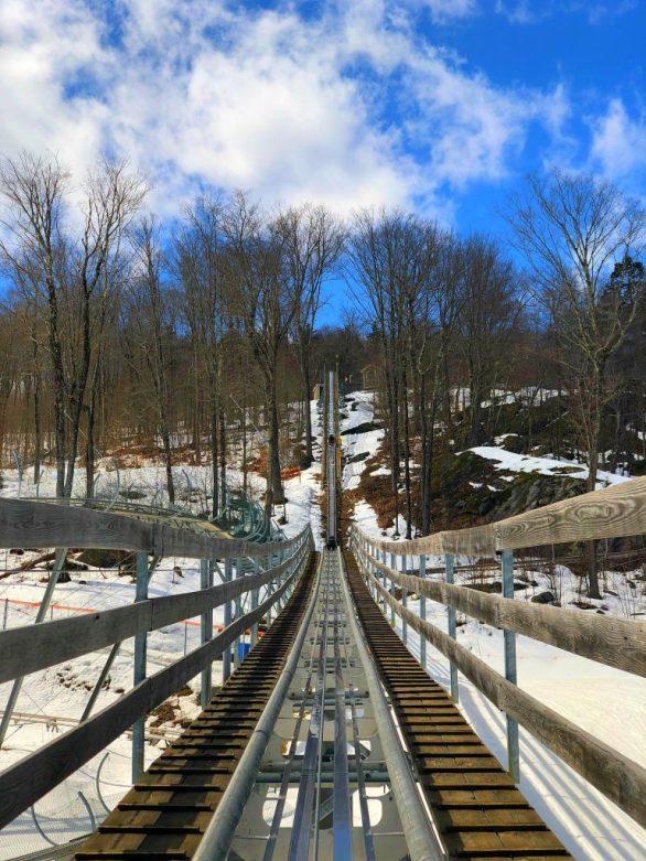 Timber Ripper Mountain Coaster - Okemo Mountain Resort