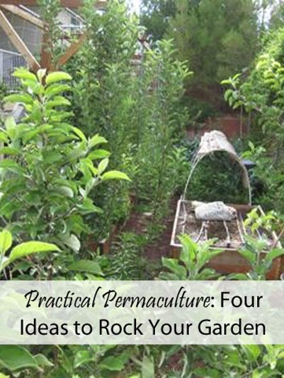 Practical Permaculture Four Ideas To Rock Your Garden Mom Prepares