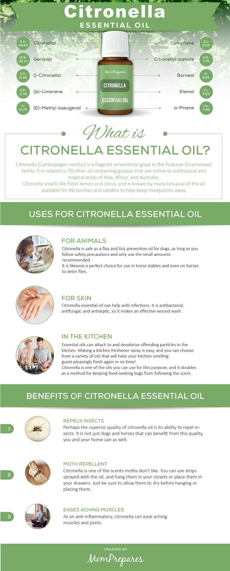 Citronella Essential Oil - The Complete Uses and Benefits ...