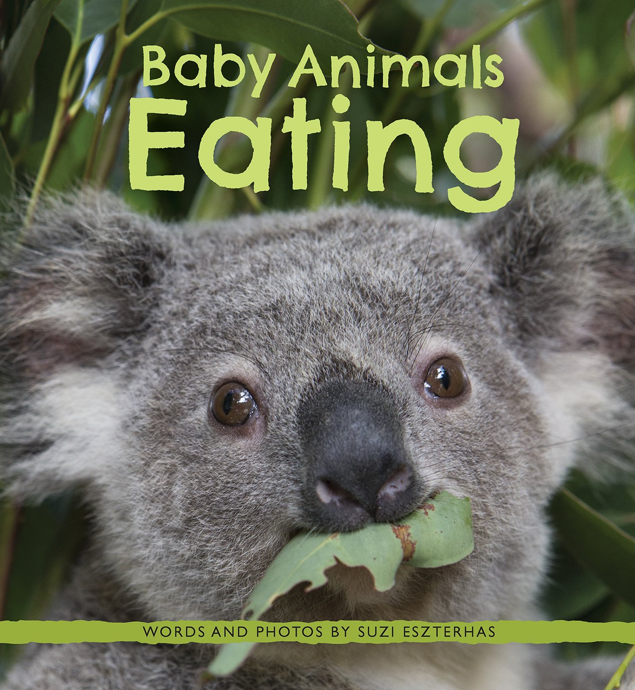 Baby Animals Eating Is The Cutest Book You Will Read Today