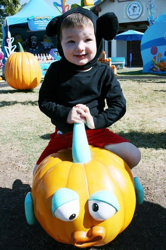 SoCal Guide SeaWorld Halloween Spooktacular