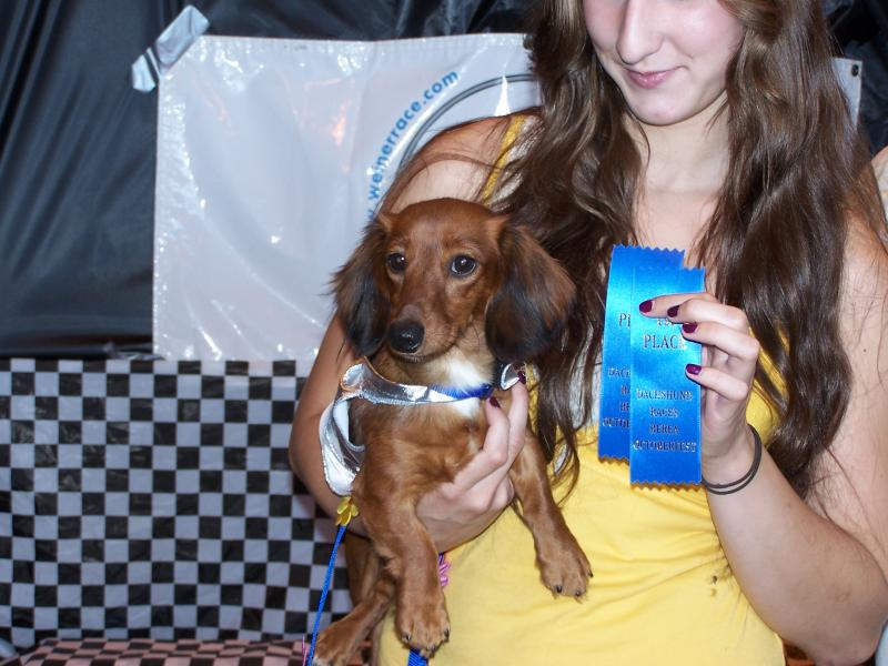 Moms Dachshunds Fun Events