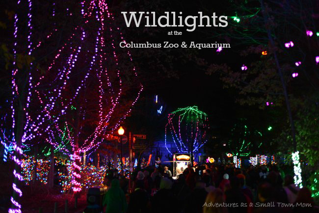 Zoo Lights Cost