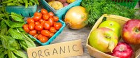 3 Reasons Why You Should Feed Your Baby Organic Baby Food ...
