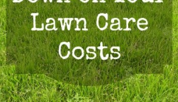 Prepare Lawn For Winter how to prepare your lawn and garden for winter | fall gardening