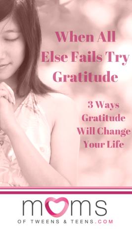 gratitude, gratitude and appreciation