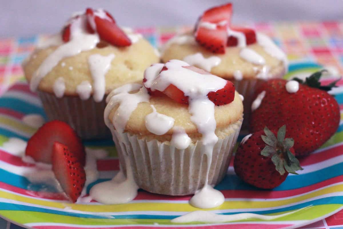 101 Gourmet Cupcake Cookbook *review AND Giveaway!* CLOSED
