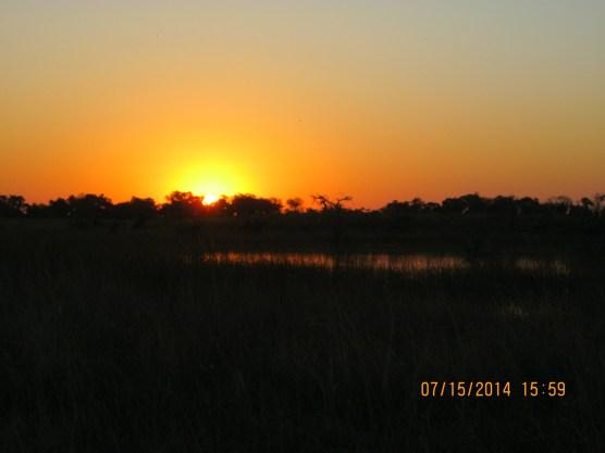 Sunset in the Okavanga Delta