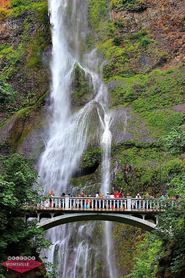 Kid Friendly Things To Do In The Columbia River Gorge