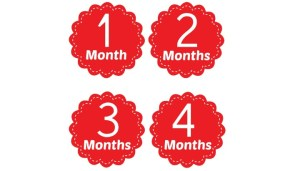 Free Printable Signs for Monthly Baby Pictures