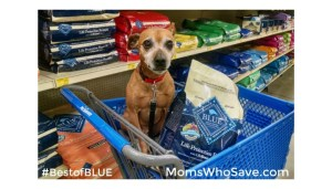 We Really do Feed our Pets Like Family With BLUE Buffalo #BestofBLUE