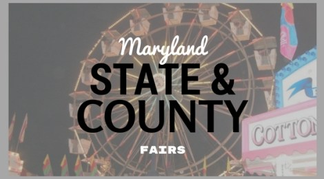 County Fairs (1)