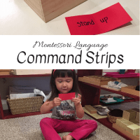 Montessori Language:  Command Strips