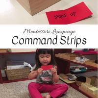 Montessori Language:  Command Strips