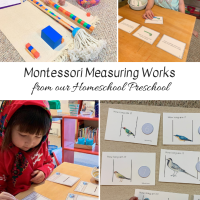 Montessori Measuring Works from our Homeschool Preschool