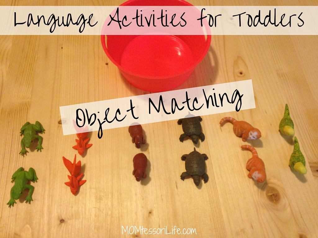 Language Activities For Toddlers Object Matching Momtessori Life