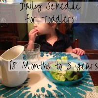 Daily Schedule for Toddlers -- 18 Months to 3 Years