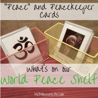 """What's On Our World Peace Shelf -- """"Peace"""" & Peacekeeper Cards"""