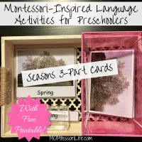 Montessori-Inspired Language Activities for Preschoolers -- Seasons 3-Part Cards [With Free Printable!]