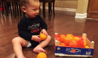 "The ""Cutie"" Clementine: Nutrition & Healthy Recipes"