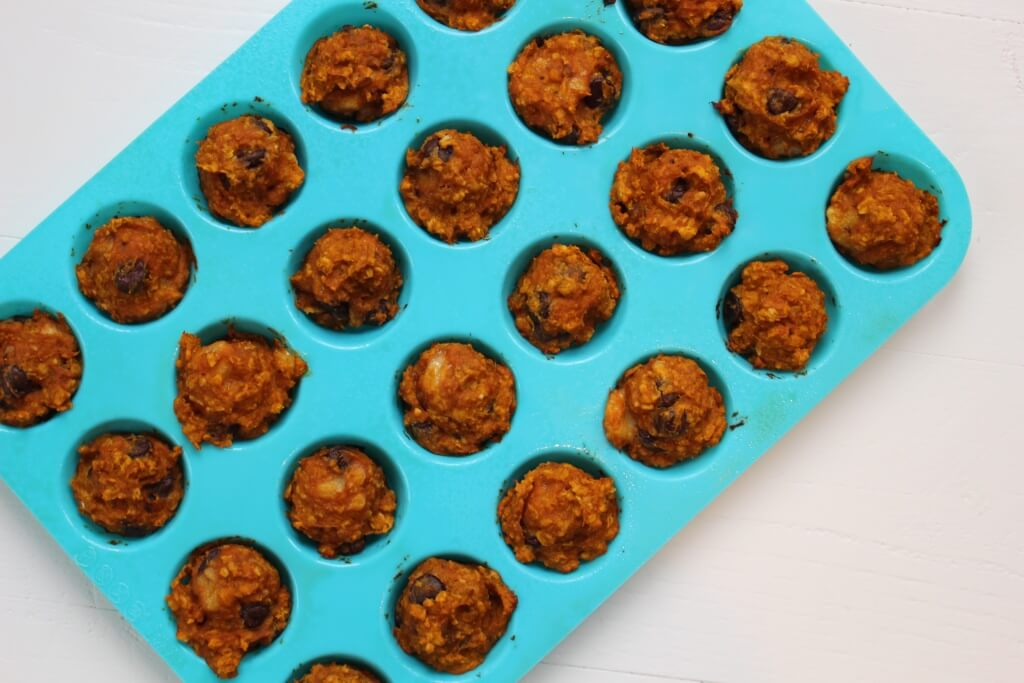 Pumpkin Banana Snack Bites make the perfect after school or post workout treat; made with simple ingredients and full of pumpkin flavor, it will be hard to resist just one!