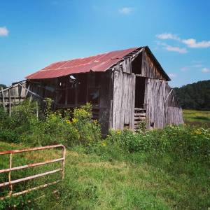 I absolutely love old, abandoned barns and this beauty was right off the trail.