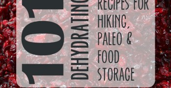 101+ Dehydrating Recipes for Food Storage, Hiking and Paleo Diets
