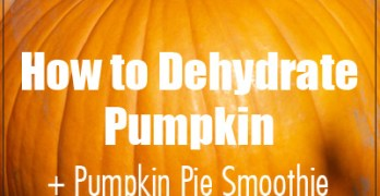 How to Dehydrate Pumpkin + Make Your Own Pumpkin Pie Smoothie