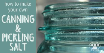 How to Make Your Own Canning & Pickling Salt
