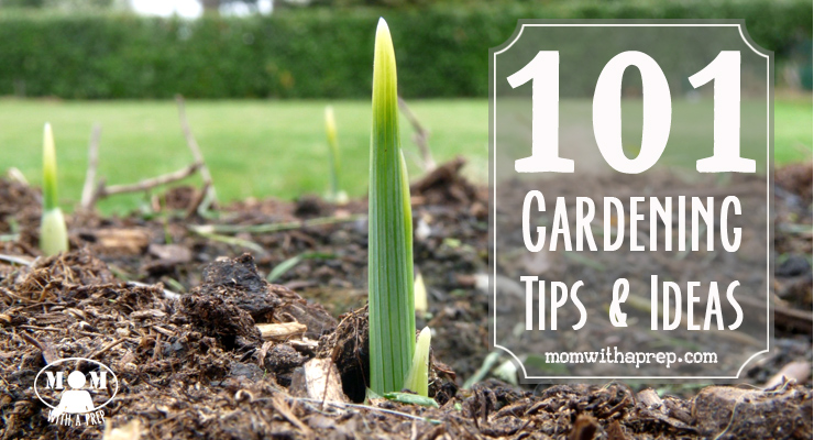 101 Vegetable Gardening Tips & Ideas Mom With A PREP