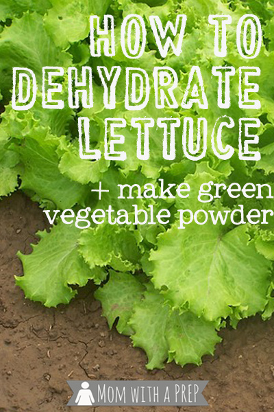 Mom with a PREP | How to Dehydrate Lettuce - Seriously. It's really something I do!