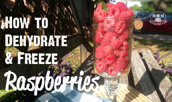 With all those raspberries that you're growing, picking up from u-pick farms, or are getting at a great price at the grocery store, learn to preserve them to benefit from them in winter! Dehydrating and freezing raspberries is so easy! I'll show you how!