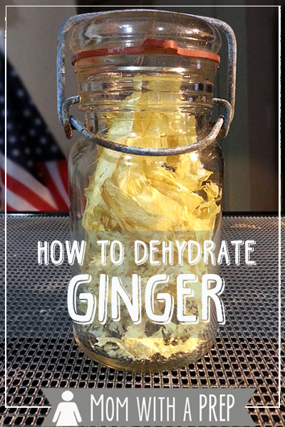 How I Preseve Foods - a collaborative Round Robin of Food Preservation posts from Prepared Bloggers.com --- How to Dehydrate Ginger Root and Make Ginger Powder by MomwithaPREP