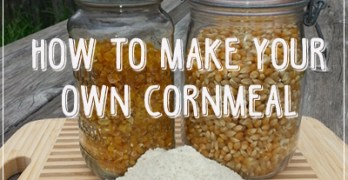 How to Make Your Own Cornmeal with Dehydrated Corn or Popcorn