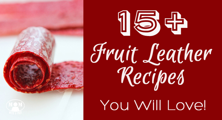 15 Fruit Leather Recipes You Will Love