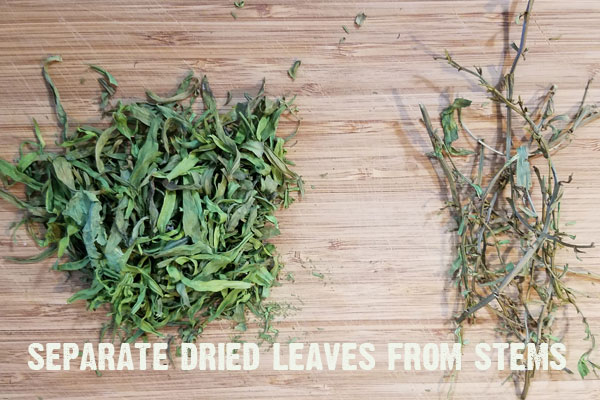 It's so easy to preserve tarragon in a variety of ways to keep the goodness from your backyard herb garden going all year long! Come see how!