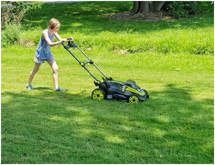 best lawn mover under 300