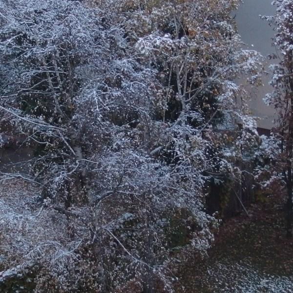 5 idées pour profiter de son balcon en hiver