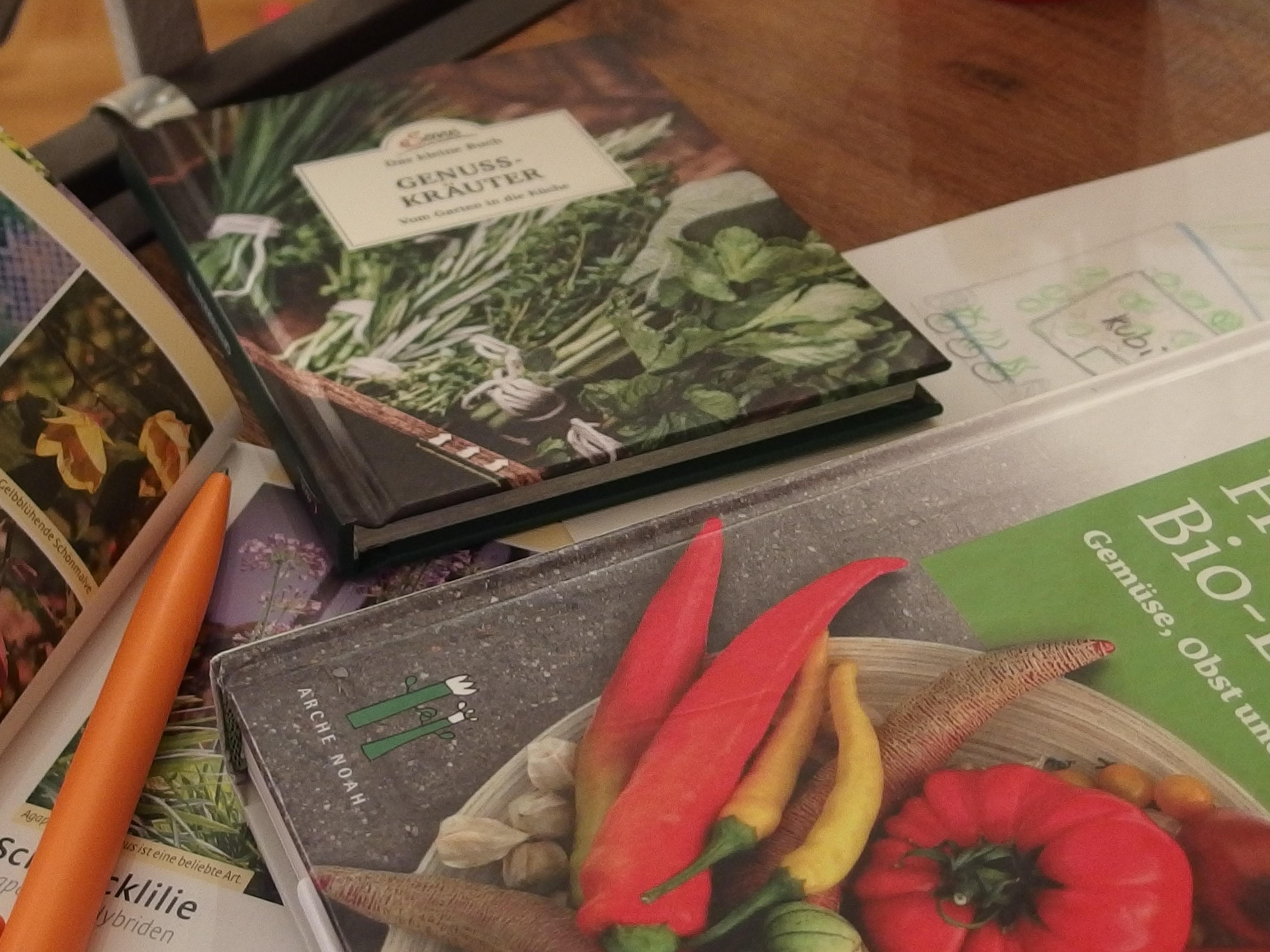 52 semaines, 52 plantes: mon défi pour l'année 2019