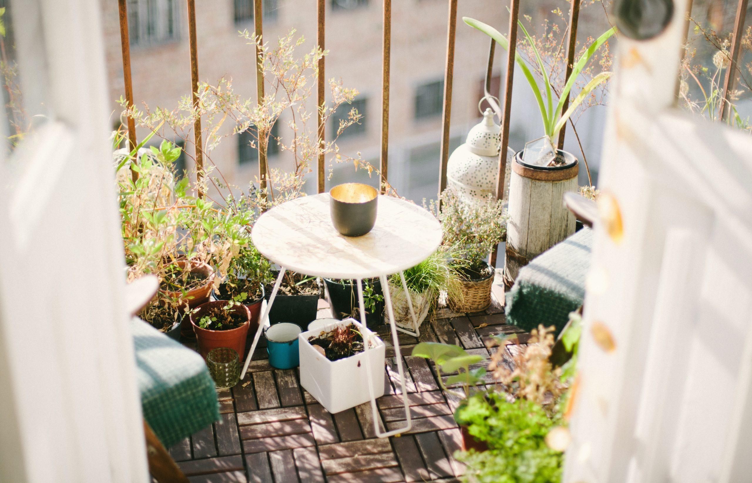Organiser son potager de balcon : article invité