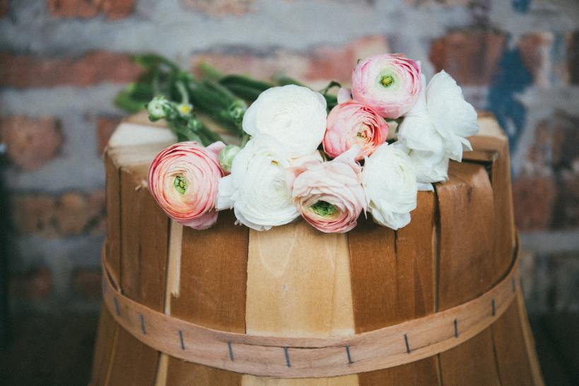 La renoncule est la plus frileuse des fleurs de printemps