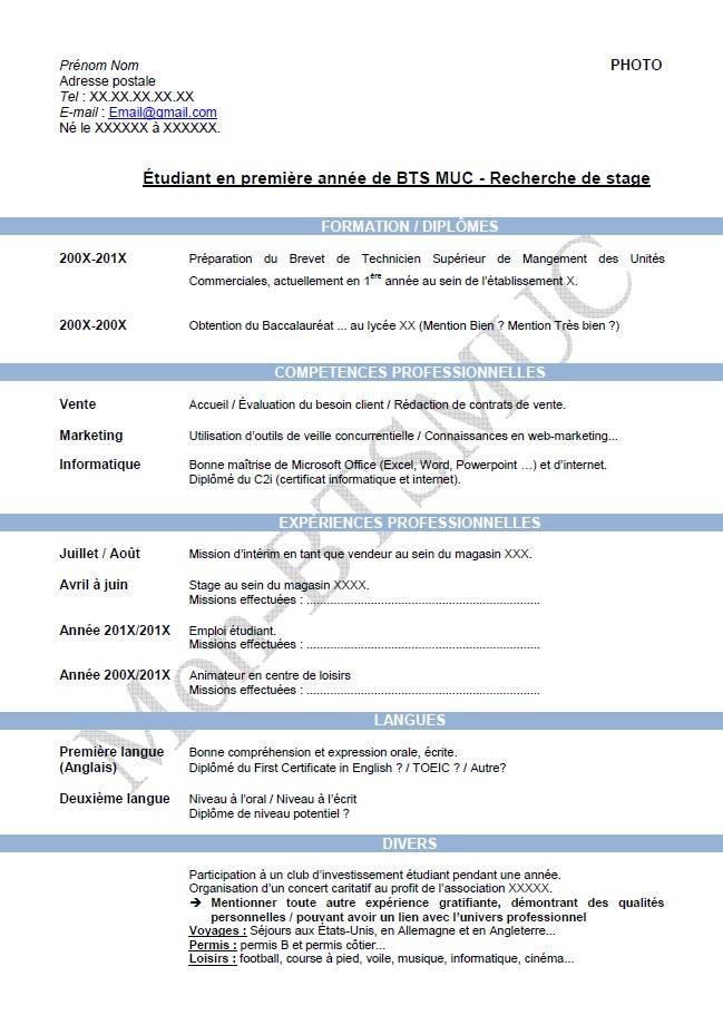 modele cv bts Modèle Curriculum Vitae numéro 1 modele cv bts